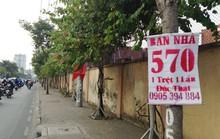 Xem kỹ pháp lý trước khi mua nhà phố giá rẻ vùng ven