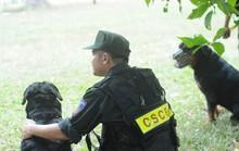 Hành trình theo dấu những kẻ đánh bom trụ sở công an ở TP HCM