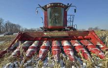 Trung Quốc không dễ thuê đất Nga