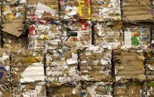 Những tỉ phú biến rác thành vàng trên thế giới