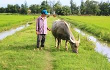 Chấm dứt việc thu phí lạ ở Quảng Bình và trả lại tiền cho dân
