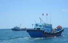 Tìm thấy thi thể một ngư dân sau 5 ngày mất tích