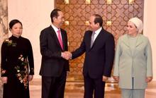 Việt Nam - Ai Cập thúc đẩy hợp tác kinh tế