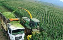 Doanh nghiệp nông nghiệp bức xúc đủ điều