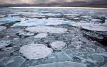 Bể nước ấm khổng lồ đang nung chảy Bắc Cực