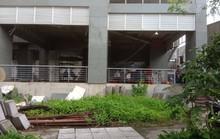 Hàng chục cư dân cố thủ ở chung cư Long Phụng để bảo vệ tài sản