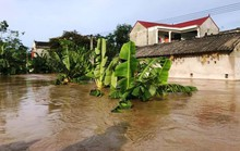 Thanh Hóa, Nghệ An ngổn ngang do mưa lũ