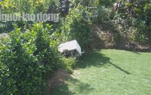 Bơm nước lũ cứu... cỏ, nam thanh niên bị điện giật tử vong