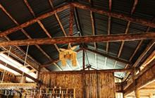 Độc đáo nhà gỗ lớn giữa rừng, không dùng đinh sắt