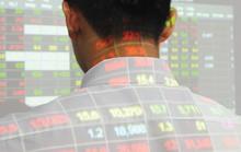 Cổ phiếu ngân hàng tăng nóng