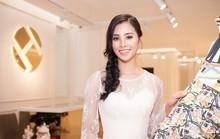 Hoa hậu Trần Tiểu Vy dự sự kiện tại Pháp