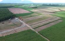 Rối rắm thu hồi đất ở hồ Dầu Tiếng: Yêu cầu huyện thanh tra việc cấp sổ đỏ