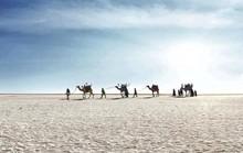 Hình ảnh siêu thực ở sa mạc muối khổng lồ của Ấn Độ