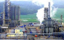 Đại gia Thái muốn mua trọn tổ hợp hóa dầu 5 tỷ USD