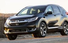 HVN đạt kỷ lục về doanh số bán xe theo năm