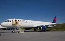 Chim sẻ nhỏ khiến máy bay 55 tấn cũng phải đầu hàng