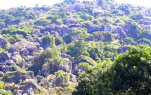 Biến ngọn đồi 2 triệu USD thành thiên đường du lịch