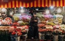Chợ hoa Quảng An sáng đèn, lung linh những ngày giáp Tết