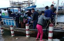 Vụ người ơi, đừng về Tam Hải nữa: Huyện họp xử lý khẩn
