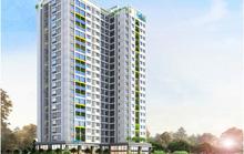 Tỉnh, thành phải công bố tính pháp lý các dự án bất động sản