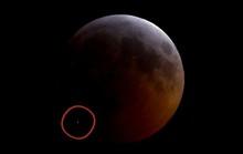 Xôn xao ánh sáng trắng lóe lên trong kỳ siêu trăng sói máu