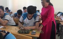 TP HCM bắt đầu tuyển dụng giáo viên cho năm học mới