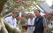 Cuộc thi Hoa Cảnh - Tôn vinh nét đẹp đặc sắc của các loài hoa kiểng Việt Nam