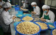 Việt Nam đặt mục tiêu vào tốp 15 nền nông nghiệp phát triển nhất thế giới