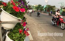 Độc đáo những tuyến đường đầy hoa ở đất Sen hồng Đồng Tháp