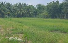 Chơi chiêu, làm liều khi bán đất: Sở TN-MT Tiền Giang ban hành tối hậu thư
