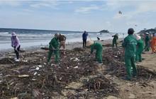 Đau đầu với rác đại dương