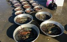 Chợ hải sản tính tiền theo thau ở Bình Thuận
