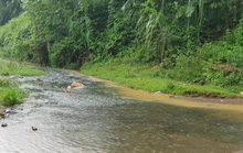 Nước sạch Hà Nội có mùi lạ: Phát hiện bất ngờ từ đầu nguồn gần nhà máy nước Sông Đà