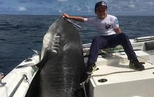 Cá mập 314 kg thất thủ trước bé trai 8 tuổi