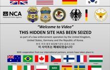 Đánh sập trang web khiêu dâm trẻ em hạng nặng, bắt 338 người khắp thế giới