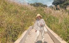 Giới trẻ khoe ảnh với đồng cỏ lau trắng dịp cuối thu ở Bình Liêu
