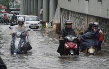Con đường đau khổ Nguyễn Hữu Cảnh bắt đầu nâng cấp từ ngày 5-10