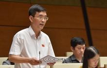 Đại biểu Quốc hội nêu lý do Việt Nam chưa hóa rồng, hóa hổ
