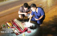 Hai bà cháu sang đường bị xe khách tông tử vong