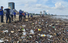 Rác lại tràn ngập biển Vũng Tàu, hàng ngàn người vật lộn thu dọn