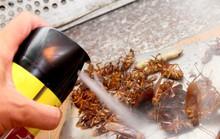 Trảm cơ sở bán thuốc diệt côn trùng chung với thực phẩm