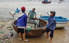 Tình ngư dân trong cơn chạy bão