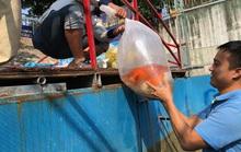Tháo dỡ hệ thống thí điểm sông Tô Lịch, di chuyển đàn cá koi sang Hồ Tây
