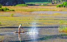 Đầm nước được ví như vùng vịnh không sóng
