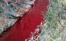 Dòng sông đỏ lòm máu heo gần biên giới liên Triều