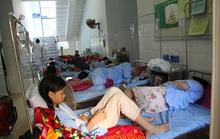 Miền Trung: Hàng ngàn người mắc sốt xuất huyết