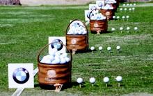 Chinh phục giải thưởng 20 tỉ đồng và tấm vé vàng đến Nam Phi tham dự vòng chung kết Thế giới BMW Golf Cup