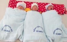 """""""Rụng tim"""" với 3 bé trai sinh 3 kháu khỉnh ở Cà Mau"""
