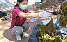 Mổ xác nai già, thấy 7 kg rác nhựa và... đồ lót