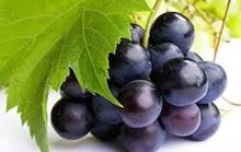 Làm đẹp với các loại quả màu tím